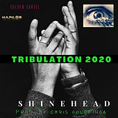 Truibulation 2020 by Shinehead