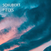 Schubert - Pieces de Franz Schubert