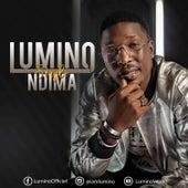 Ndima by Lumino