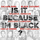 Is It Because I'm Black von Salaam Remi & Black On Purpose