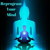 Reprogram Your Mind: Positive Law of Attraction, Self Love Healing, Sleep Meditation & Healing Music by Chakra Healing Music Academy