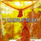 77 Calming of the Day by Classical Study Music (1)