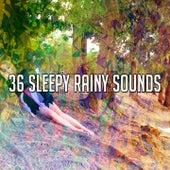 36 Sleepy Rainy Sounds by Rain Sounds and White Noise
