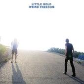 Weird Freedom by Little Gold