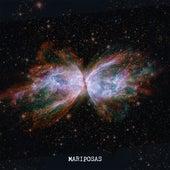Mariposas by Daniel Drexler