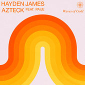 Waves of Gold de Hayden James