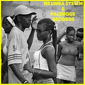 Nkumba System y Palenque Records by Nkumba System
