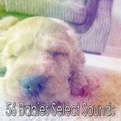 56 Babies Select Sounds de Sleepy Night Music