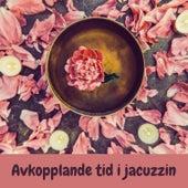 Avkopplande tid i jacuzzin von Blandade Artister