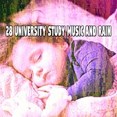28 University Study Music and Rain by Rain Sounds and White Noise