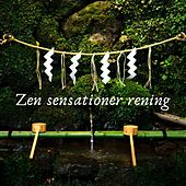 Zen sensationer rening von Blandade Artister