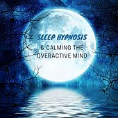 Sleep Hypnosis & Calming the Overactive Mind: Lucid Dreaming, Insomnia Cure, Instant Sleep, Healing Music by Trouble Sleeping Music Universe