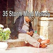 35 Storm Mind Melody by Rain Sounds and White Noise