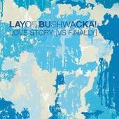 Love Story (vs Finally) von Layo & Bushwacka!
