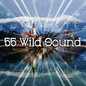 55 Wild Sound de Ocean Sound