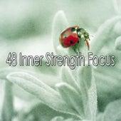 48 Inner Strength Focus de Sleepy Night Music