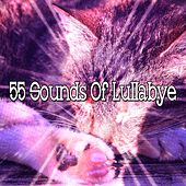 55 Sounds of Lullabye by Best Relaxing SPA Music