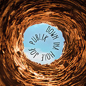 Down Ina Hole de Joe Publik