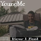 How I Feel von Young M.C.