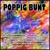 Poppig bunt von Various Artists