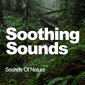 Soothing Sounds de Sounds Of Nature