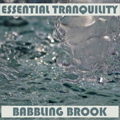 Tranquility - Babbling Brook de Essential Band