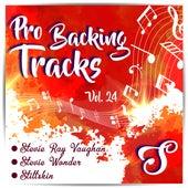 Pro Backing Tracks S, Vol.24 by Pop Music Workshop