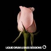 Liquid Drum & Bass Sessions Vol 12 by Dreazz