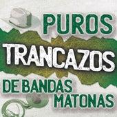 Puros Trancazos De Bandas Matonas de Various Artists