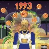 1993 de Kass Chamberlain