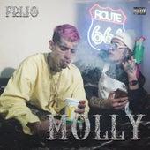 Molly de Frijo