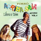Vol. 4  Ao Vivo - Forró von Arriba Saia