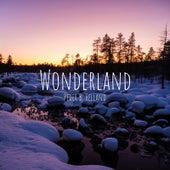 Wonderland de Peder B. Helland
