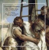 Das Leiden Jesu: Passion Cantatas, Vol. 4 by Extempore