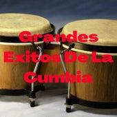 Grandes Éxitos de la Cumbia de Eh Guacho, Flor De Piedra, La Base, Leo Mattioli