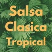 Salsa Clasica Tropical de Bobby Cruz, Bobby Valentin, Cheo Feliciano, Oscar D' Leon, Pete ''El Conde'' Rodriguez, Ray Barretto, Tito Puente