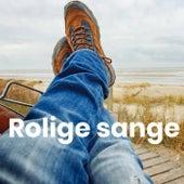 Rolige sange - Stille sange - Slap af by Various Artists