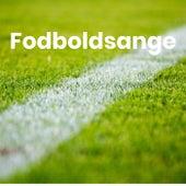 Fodboldsange - Landsholdssange by Various Artists