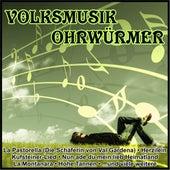 Volksmusik Ohrwürmer von Various Artists