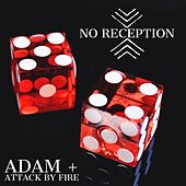 No Reception de adam