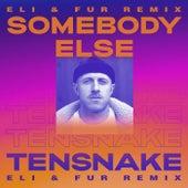Somebody Else (Eli & Fur Remix) de Tensnake