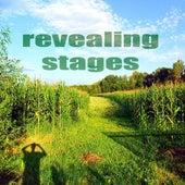 Revealing Stages (Inspiring House Music) de Paduraru