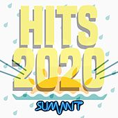 Hits 2020 fra Various Artists