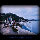 What a Wonderful World by Joseph Kingston
