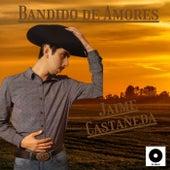 Bandido de Amores de Jaime Castañeda