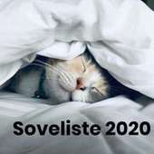 Soveliste 2020 by Various Artists