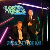 Pedazos de Mi by Los Yonics