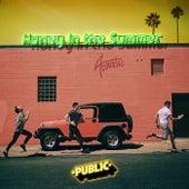 Honey In The Summer (Acoustic) de PUBLIC