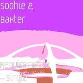 Requirements - Single van Sophie