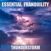 Thunderstorm de Essential Band